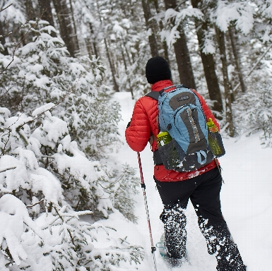 Winter Hiking 101