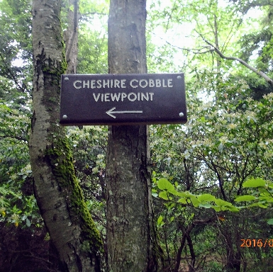 Cheshire Cobble sign