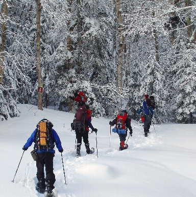 Adult Adventure: Snowshoe and Yoga