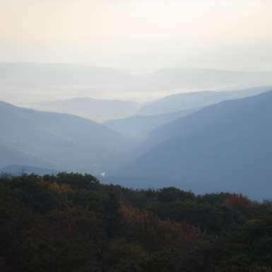 Morning Mist at Dolly Sods North.