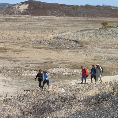 Spring Hike at Great Island, Wellfleet, MA