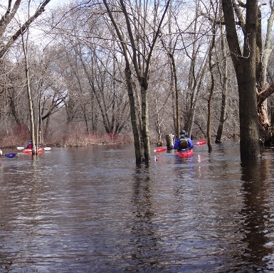 Assabet in Flood